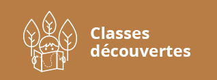 image classes découvertes